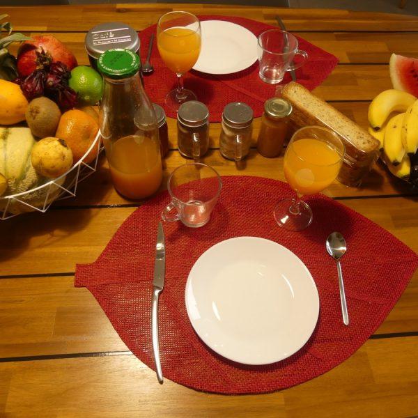 13 petit dejeune oranger