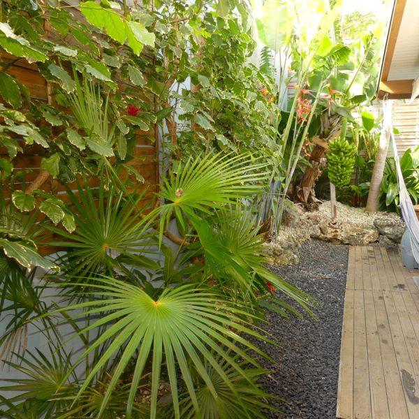31 jardin hamac bananier